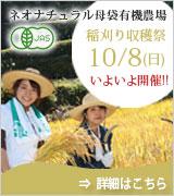 稲刈り収穫祭&体験会