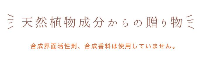 べびーべっち LP4