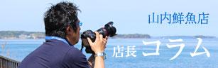山内鮮魚店店長コラム