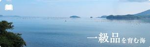 「一級品」を育む海、南三陸独自の地形