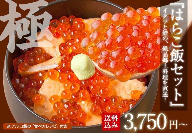 【送料込み】はらこ飯セットA(1~2人前)※はらこ飯の作り方レシピ付